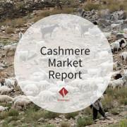 Cashmere Market Report