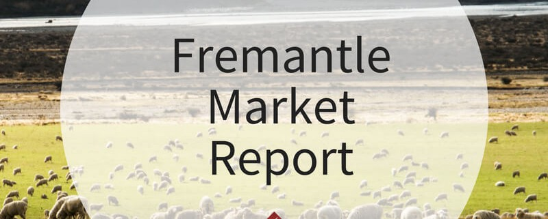 Fremantle Market Report