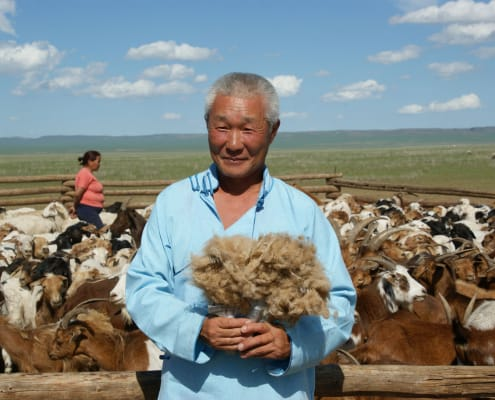 Mongolian Cashmere Grower