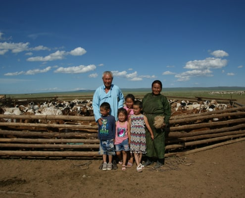 Mongolian Cashmere Growers