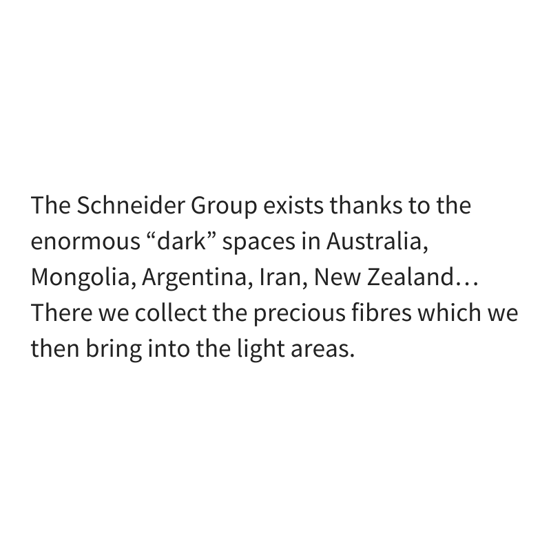 The Schneider Group Exists because of dark spaces
